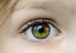 zelene oko s mihalnicami